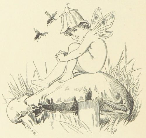 Fairy on Mushroom Illustration by E. Gertrude Thomson