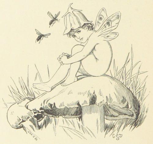 Fairy on Mushroom Illustration by E. Gertrude Thomson