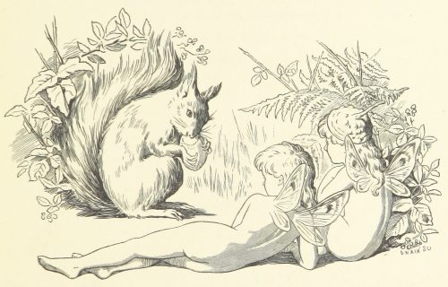 Fairies and Squirrel Illustration by E. Gertrude Thomson