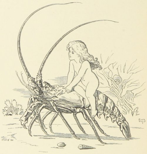 Fairy Riding on Cray-Fish Illustration by E. Gertrude Thomson