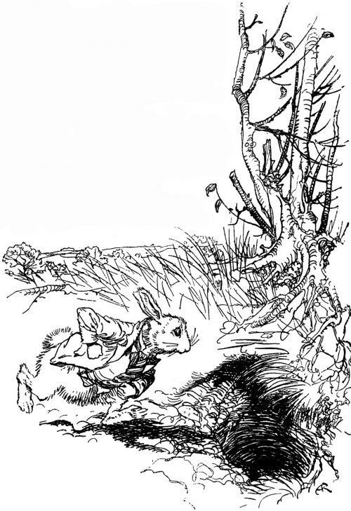 Alice's Adventures in Wonderland – A large rabbit-hole under the hedge