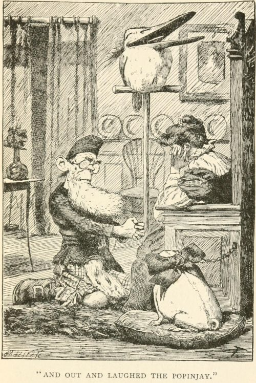 The Lang Coortin Poem - And out and laughed the popinjay Illustration by Arthur B. Frost