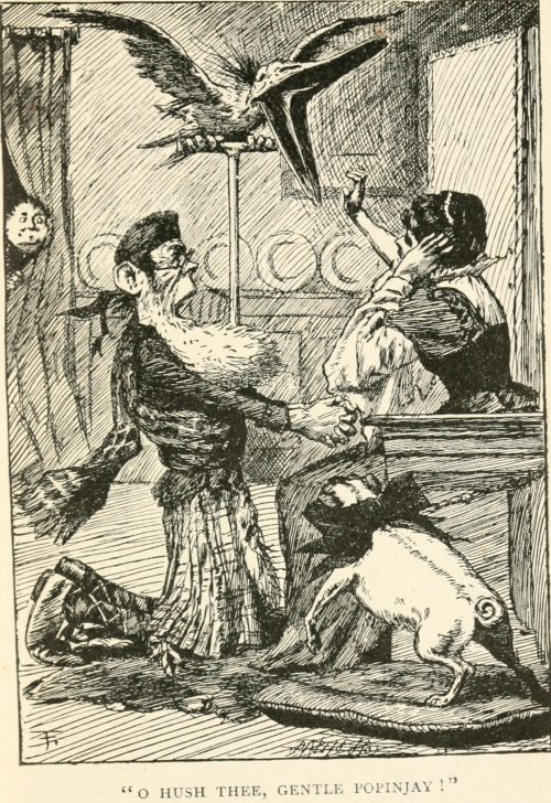 The Lang Coortin Poem - O hush thee, gentle gentle popinjay! Illustration by Arthur B. Frost