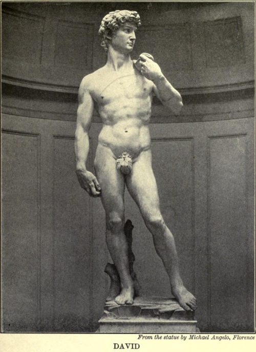 David From the statue by Michael Angelo, Florence