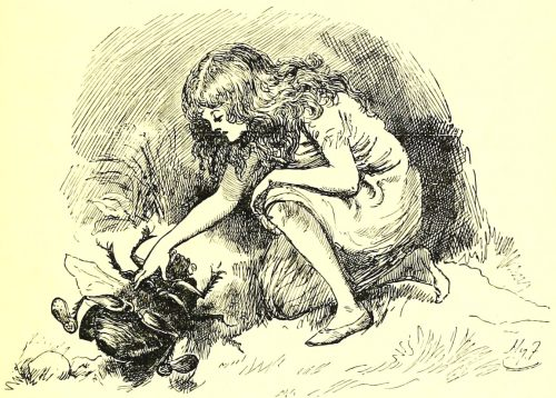 Sylvie and Bruno - Fairy-Sylvie Illustration by Harry Furniss