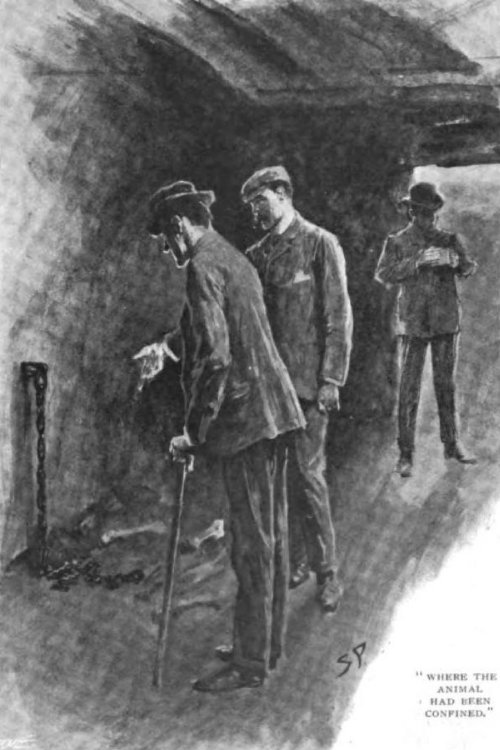 Sherlock Holmes The Hound of the Baskervilles where the animal had been confined