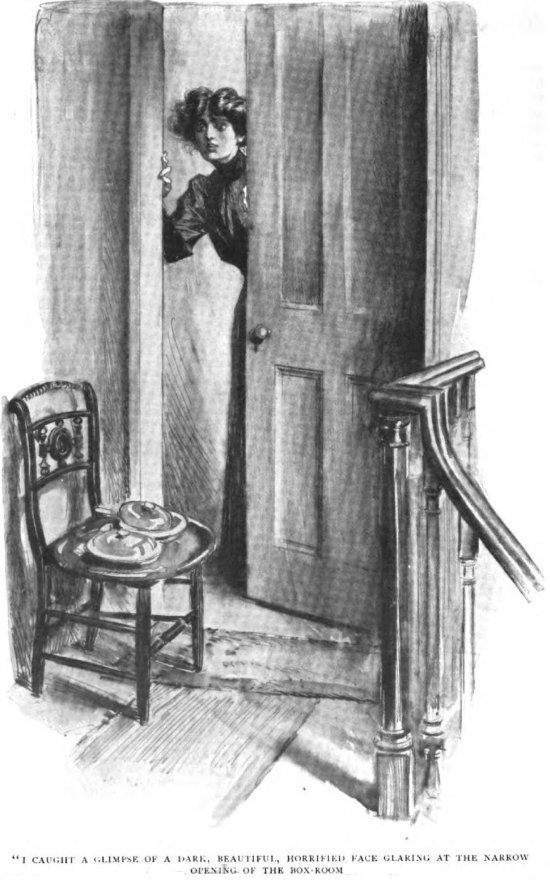 Sherlock Holmes The Adventure of the Red Circle I caught a glimpse of a dark, beautiful, horrified face glaring at the narrow opening of the box-room