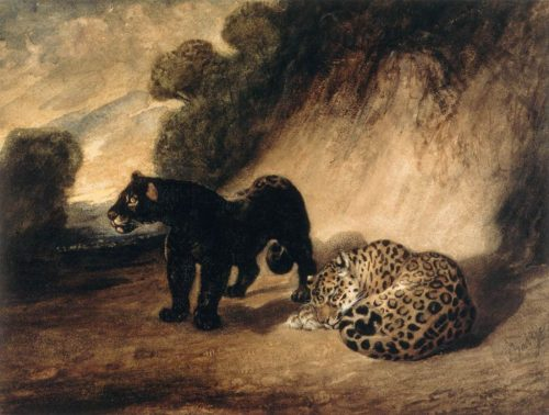Two Jaguars from Peru Painting by Antoine-Louis Barye