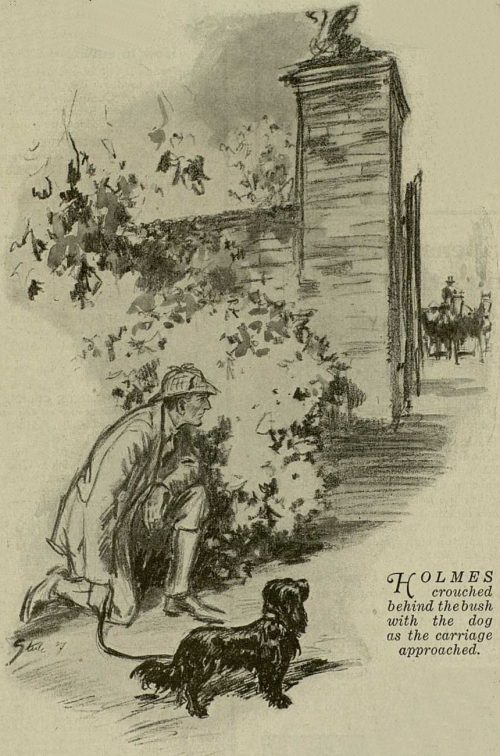 Sherlock Holmes The Adventure of Shoscombe Old Place Holmes crouched behind his bush with the dog