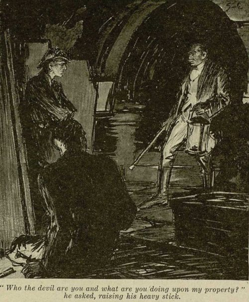 Sherlock Holmes The Adventure of Shoscombe Old Place Who the devil are you? he thundered